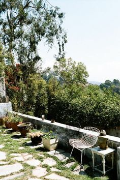pot plants and open spaces