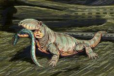 Permian Period | external image ophiacodon_mirus.jpg