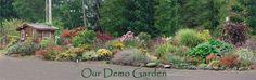 The beautiful demo garden @ the Greenhouse Nursery in Port Angeles Wa