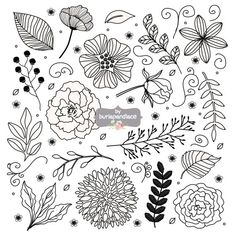 Rustic wedding clipart, Flower clipart, Hand Drawn clipart leaf, floral, nature,wedding clipart, bridal clipart, shower invitation clipart