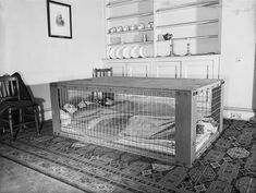 """A British couple sleeps inside a """"Morrison shelter"""" used as protection from collapsing homes during the WWII 'Blitz' bombing raids... March 1941 -"""