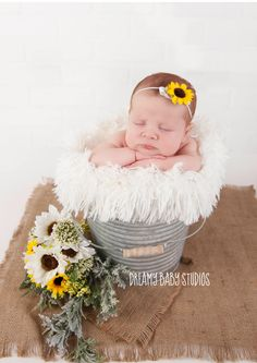 Sunflower newborn baby girl, dreamy Baby studios, Virginia Beach newborn photography studio, baby photography, baby girl photography, baby bucket