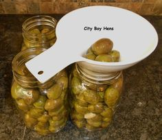 Curing Olives at Home Lebanese Recipes, Italian Recipes, Pickled Olives, Pickled Fruit, Olive Brine, Olive Harvest, Marinated Olives, Italian Olives, Olive Recipes