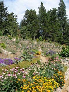 Slope permiculture garden -- Edible Landscaping: Kitchen Garden | jardin potager | bauerngarten | k�kstr�dg�rd by colorcrazy