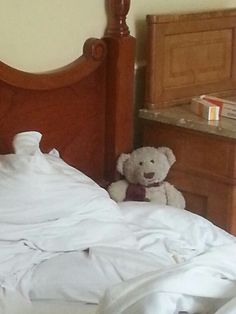 Travel Bear in Vienna :: Baxter in Wien
