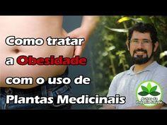 Autor da Própria Saúde - Como tratar a Obesidade com o uso de Plantas Medicinais - YouTube