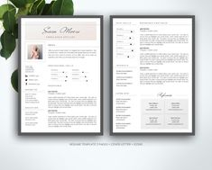 Criss Cross Resume Template Pkg  Creative Criss Cross And Resume