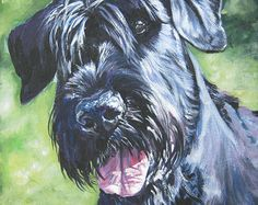 Giant Schnauzer art CANVAS print of LA Shepard painting 12x12 dog portrait