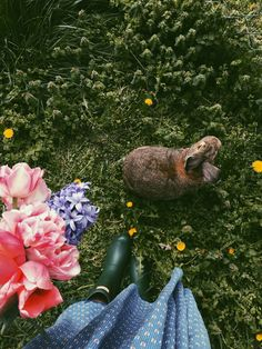 Bunny and the Bloom Country Life, Country Living, Grange Restaurant, Landscape Design, Garden Design, Home And Garden Store, Foto Art, Slow Living, Native Plants