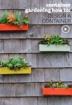 Add a pop of color to your home's exterior with a beautiful container garden. Watch how to design a container: http://www.bhg.com/videos/m/59977472/container-gardening-how-to-design-a-container.htm?socsrc=bhgpin022014gardencontainer