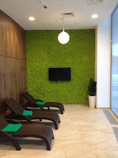 Картинки по запросу декоративный мох на стене