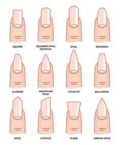 Illustration of Different nail shapes Fingernails fashion Trends vector art clipart and stock vectors. Image The post Illustration of Different nail shapes Fingernails fashion Trends vector art c appeared first on nageldesign. Summer Acrylic Nails, Best Acrylic Nails, Acrylic Nail Designs, Spring Nails, Squoval Acrylic Nails, Fall Nails, Matte Nail Art, Oval Nail Designs, Acrylic Nails Almond Short