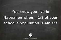 You know you live in Nappanee when... 1/8 of your school's population is Amish!