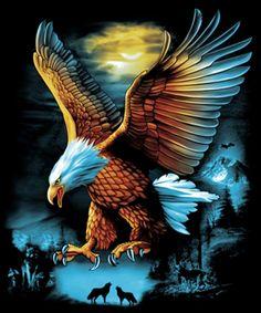 48213582 How Eagle hunt its prey? Eagle Wallpaper, Lion Wallpaper, Animal Wallpaper, Eagle Images, Eagle Pictures, Nature Pictures, Native American Pictures, Native American Art, American Flag