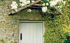 Thorny problems: what is a good climbing plant to cover a wall? Our gardening expert answers readers Plant Design, Garden Design, North Facing House, Rustic Walls, Facade House, Cool Plants, House Plants, Planting Flowers, Climbing