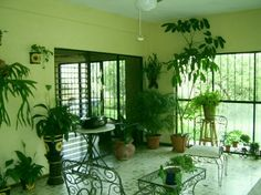 Rooms With Plants You must click on the pic for much, much more!