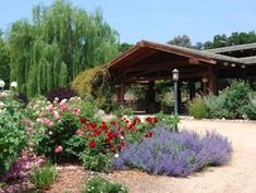 descanso gardens rose garden - Google Search