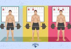 Cual es la mejor frecuencia de entrenamiento para aumentar músculo? Build Muscle, Healthy Habits, Health Fitness, Family Guy, Lol, Teaching, Workout, Guys, Fictional Characters