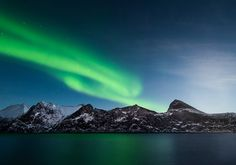 Northern lights / Senja - null