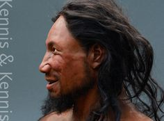 Reconstruction of Pestera cu Oase made by Adrie and Alfons Kennis Prehistoric Man, Human Reference, Three Dimensional, Archaeology, Facial, Sculptures, Artist, Facial Care, Sculpture
