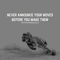 67 Funny Motivational Quotes to Inspire You 46 Short Funny Quotes, Motivational Quotes For Success, Great Quotes, Positive Quotes, Inspirational Quotes, Genius Quotes, Awesome Quotes, Meaningful Quotes, Lion Quotes