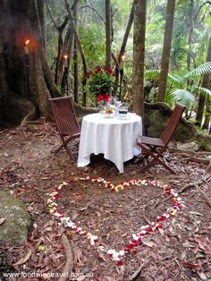 Crystal Creek Rainforest Retreat, Tweed Valley, NSW, Australia - one for the romantics at heart. Rainforest Locations, Best Places To Eat, Pure Beauty, Gold Coast, Cheryl, Wine Recipes, Beams, Tweed, The Good Place