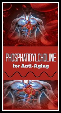 Phosphatidylcholine for Anti-Aging - Why You NEED to start taking it now!
