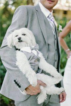 My Dogs Will Definitely Be Apart of My Wedding
