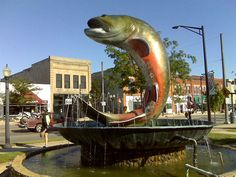 Yes, that's a big trout. National Trout Festival:  (76th Year)  Kalkaska, Michigan (about 30 minutes south of Traverse City) has the honor of being the home of the National Trout Festival.  Every year Kalkaska, hosts the festival celebrating the opening Trout season.  Events include a large flea market, fishing contest, and carnival.  The festival runs April 25-29.
