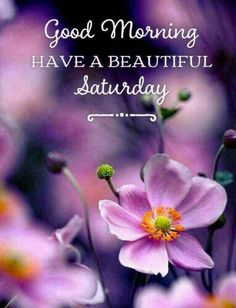 Saturday Good Morning- Messages, Texts, Quotes, Wishes Good Morning Saturday Images, Happy Saturday Quotes, Good Morning Quotes For Him, Good Saturday, Good Day Quotes, Good Morning Messages, Good Morning Good Night, Good Morning Wishes, Morning Blessings