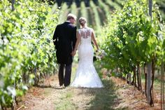 A walk between the vines for the bride and groom. Image courtesy of Joe Weil Photography - English Oak Vineyard Weddings wedding venue in Lytchett Matravers (nr Poole), Dorset Vineyard Wedding Venues, Country House Wedding Venues, Wedding Reception Venues, Rustic Wedding, Wedding Blessing, European Wedding, Wedding Breakfast, Wedding Planning, Wedding Photography