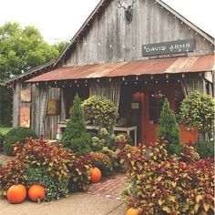 20 Incredible Fall Decoration for Your Front Yard On Budget Browse fall front yard decorating suggestions and layouts discover design inspiration from a number of fall front yard including a flowers and pumpkins .