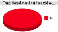 ... Harry Potter on Pinterest | Pie charts, Voldemort and Harry potter