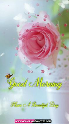 Good Morning Wishes Gif, Good Morning Beautiful Pictures, Good Morning Cards, Good Morning Picture, Cute Good Morning, Good Morning Greetings, Good Morning Flowers Pictures, Good Morning Beautiful Flowers, Good Morning Roses