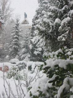 Nieve en Gasteiz