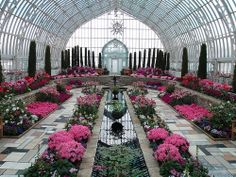 What a beautiful conservatory, must visit!