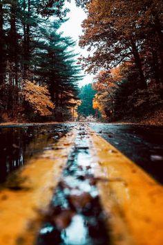 . . . . a rainy Autumn day.