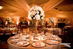 South Florida Wedding Venue: Treetop Ballroom at Jungle Island