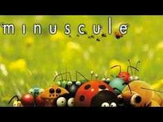 Minuscule - The caterpillar who wanted to see the ocean Ladybug Youtube, Growth Mindset, Caterpillar, Beetle, Fan Art, Christmas Ornaments, Kids, Snails, Ladybugs