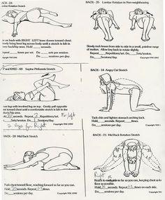 Image Detail for - minimus stretch supine iliocostalis stretch standing hamstring stretch ...