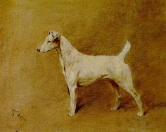 Arthur Wardle - Champion Sandown Violet, A Smooth Coated Fox Terrier