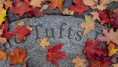 Tufts Homeschool Admissions Tufts is test optional for all applicants including homeschoolers, but if scores are submitted they will be considered. Professional School, College Search, Biomedical Science, Fall Semester, School Of Engineering, Faculty And Staff, Graduate Program, Art Curriculum, College Admission