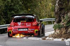 C3 WRC Rally Raid, Citroen Car, Sweet Cars, Performance Cars, Courses, Motor Car, Custom Cars, Peugeot, Race Cars