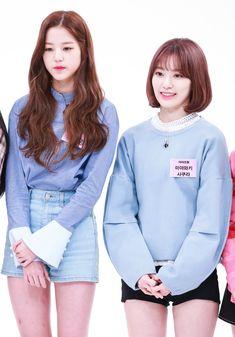 181031 Weekly Idol (주간아이돌) #izone #아이즈원 #wonyoung #sakura Sakura Miyawaki, Weekly Idol, Yu Jin, Japanese Girl Group, Nanami, Kim Min, Scene Photo, Kpop Girls, Akb48