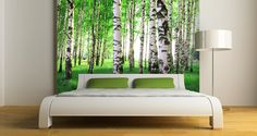 An amazing mural of a birch forest - hues of green, white and grey will create the perfect wall accent for your office or home!