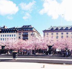 em stockholm spa i västra götaland