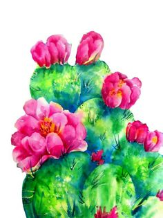Cactus Flower watercolor Southwestern Cactus Santa Fe Art Cactus Flowers Pink Flowers Southwestern Art With Heart Martha Kisling Cactus Drawing, Cactus Painting, Watercolor Cactus, Cactus Art, Cactus Flower, Watercolor Paintings, Cactus Plants, Flower Art, Buy Cactus