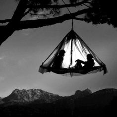 Sleep in a tree (with someone)