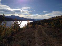 Whitehorse and surrounding area Stuff To Do, Things To Do, Yukon Territory, Alaska, Canada, Mountains, Nature, Travel, Things To Make