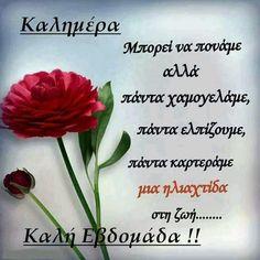Good Morning Happy, Happy Sunday, Greek Beauty, Beautiful Pink Roses, Good Week, Greek Quotes, Good Night, Verses, Words